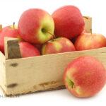 بهترین روش انبارداری و نگهداری سیب