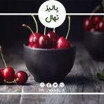 عمر درخت گیلاس